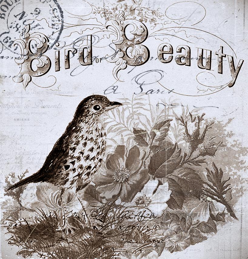 vintage inspired freebie bird of beauty. Black Bedroom Furniture Sets. Home Design Ideas