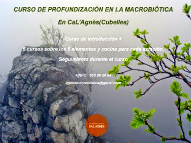 CURSO DE PROFUNDIZACIÓN EN LA MACROBIÓTICA 2014/2015