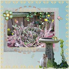 lo 2  How my garden grows