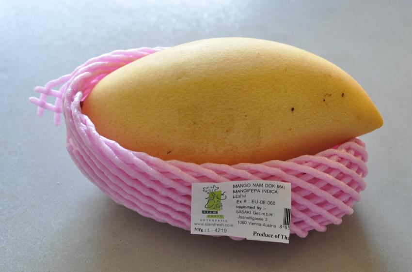 Die Küchenschabe: Sticky Rice with Mango