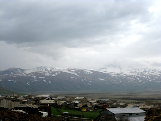 Armenia, yazidies