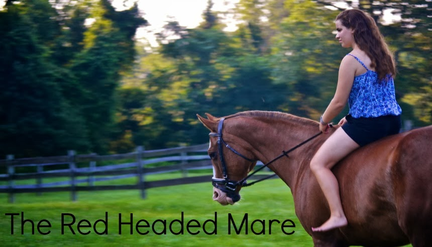 The Red Headed Mare