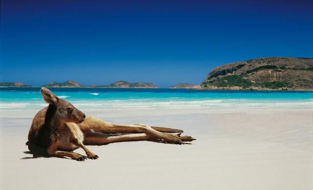 australia - world travel agency blog -around the world travel with kids blog