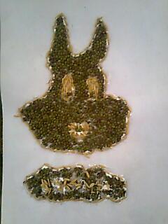 240 x 320 · 13 kB · jpeg, Mozaik dari Kacang Hijau dan Padi