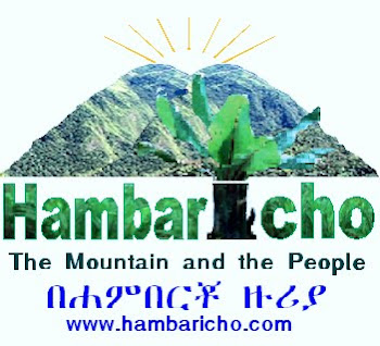 Welcome to Hambaricho!