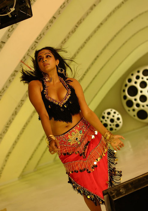 priyamani spicy , priyamani from ragada movie latest photos
