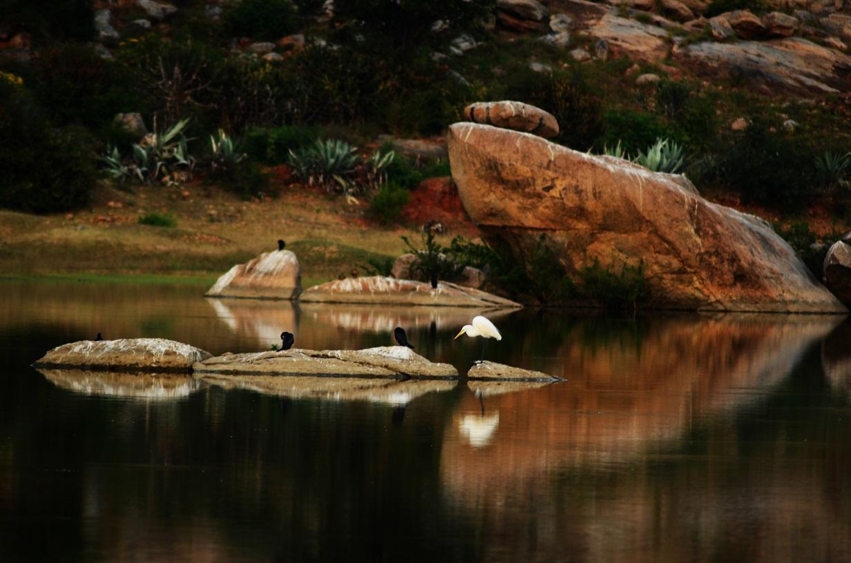 Madhugiri Lake