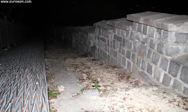 Paseando por la muralla de Seúl de noche
