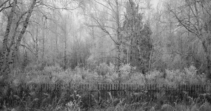 Portfolio reviews at Scotiabank CONTACT Photography Festival, Toronto