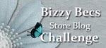 Bizzy Becs Blog Challenge
