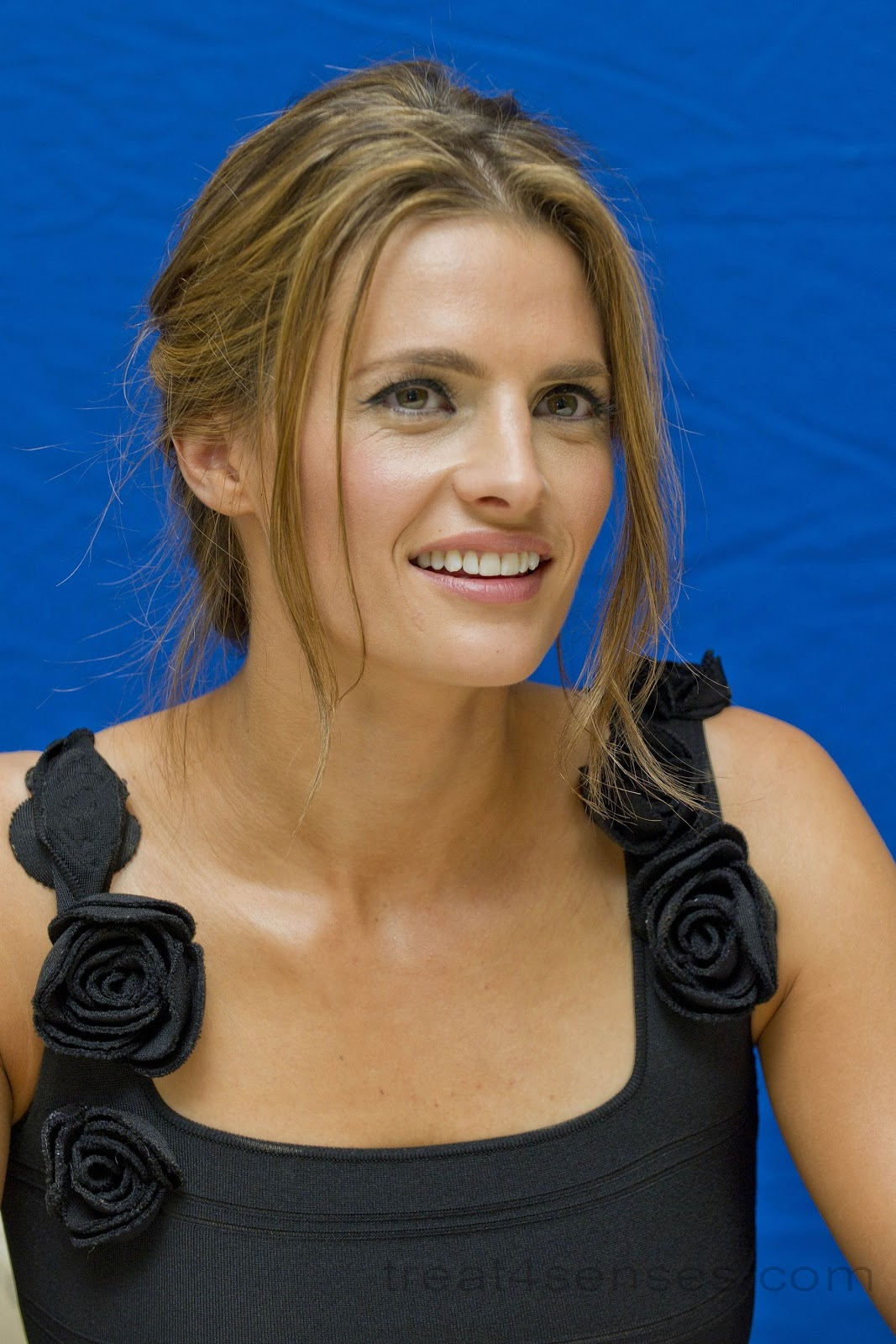 http://3.bp.blogspot.com/-rAnPYT562XI/UJC6fv4gecI/AAAAAAAAK-k/VpG_OmPS8VI/s1600/stana_katic_castle_press_conference_treat4senses_4.jpg