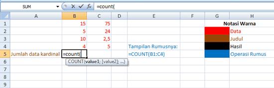 fungsi-count-di-excel