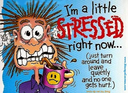 I'm a little stressed cartoon