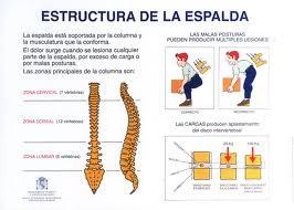 Dolihosigma el dolor en la espalda