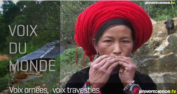 http://www.universcience.tv/video-voix-ornees-voix-travesties-5981.html