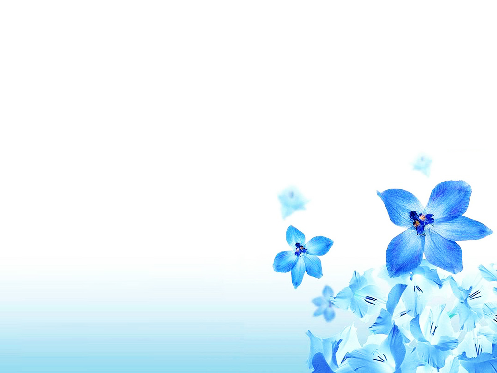 christian flower ppt background ppt backgrounds templates