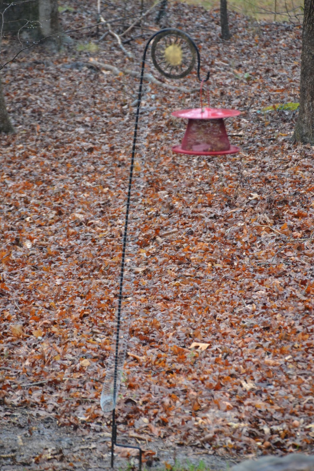 step bird with jug build pictures feeder off a how keep to steps squirrels milk