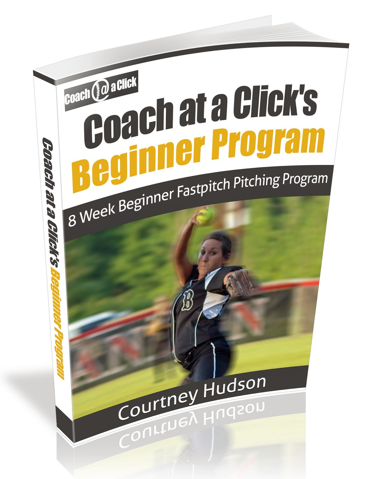 Beginner Pitching Program