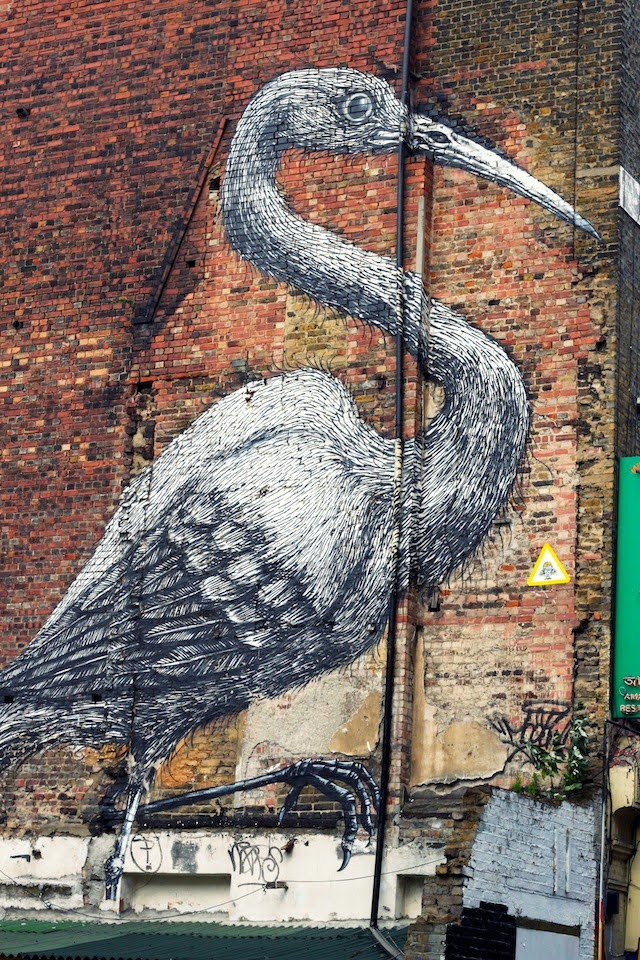 R.O.A, graffiti, street art, bird, Shoreditch, London
