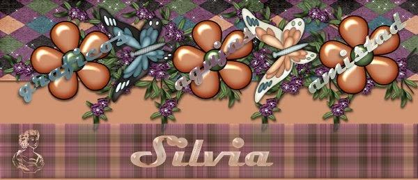 Silvia, gràficos, agujas y amistad