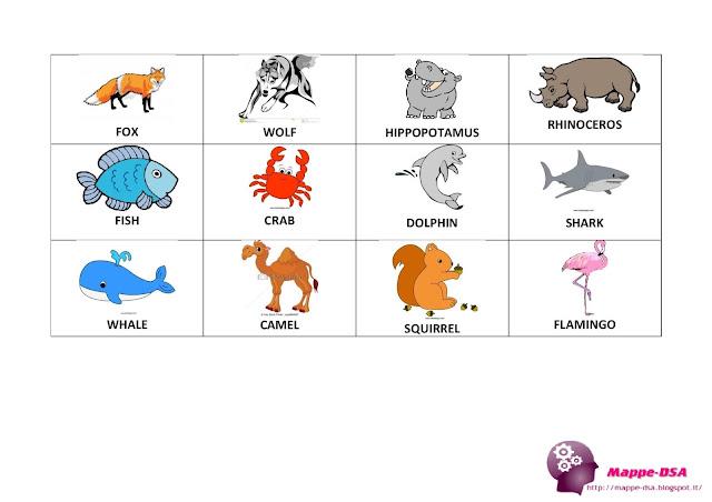 mappedsa mappa schema carte flash cards dsa dislessia inglese animali lessico english animals