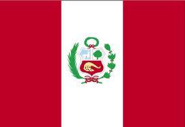 12.- DIPRAP - NACIONAL PERÚ - MIEMBRO PLENO CIDI - PRESIDENCIA SUDAMÉRICA ANDINA