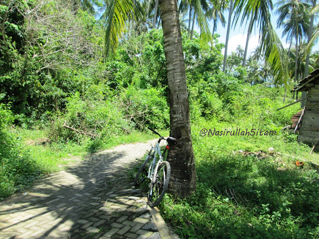 Jalanan menuju pantai Nyamplungan