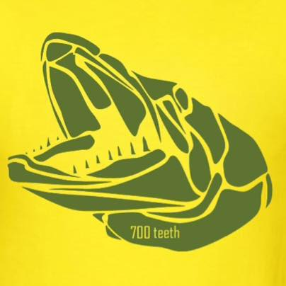 700 Teeth on YouTube