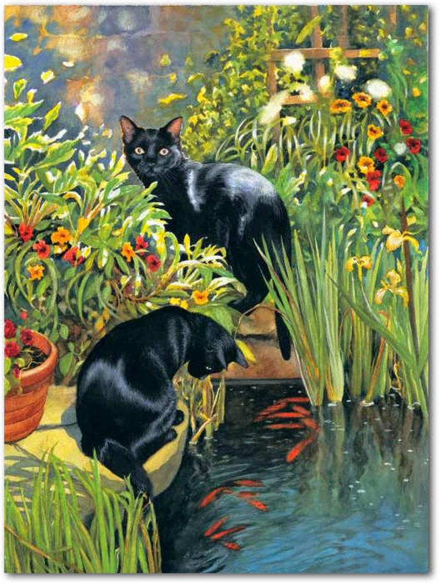Au fil des pages les chats de chrissie snelling 2 for Koi pond maine coon cattery