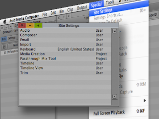 Editing the Site Settings in the Avid video editing system.