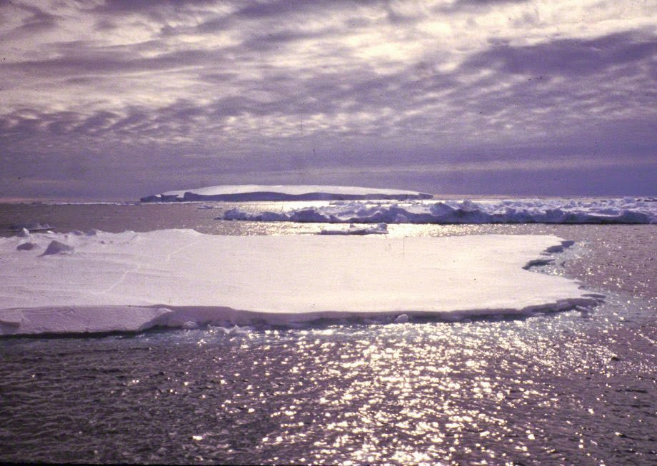 sea ice Ross Sea. Photo © Bruce Luyendyk