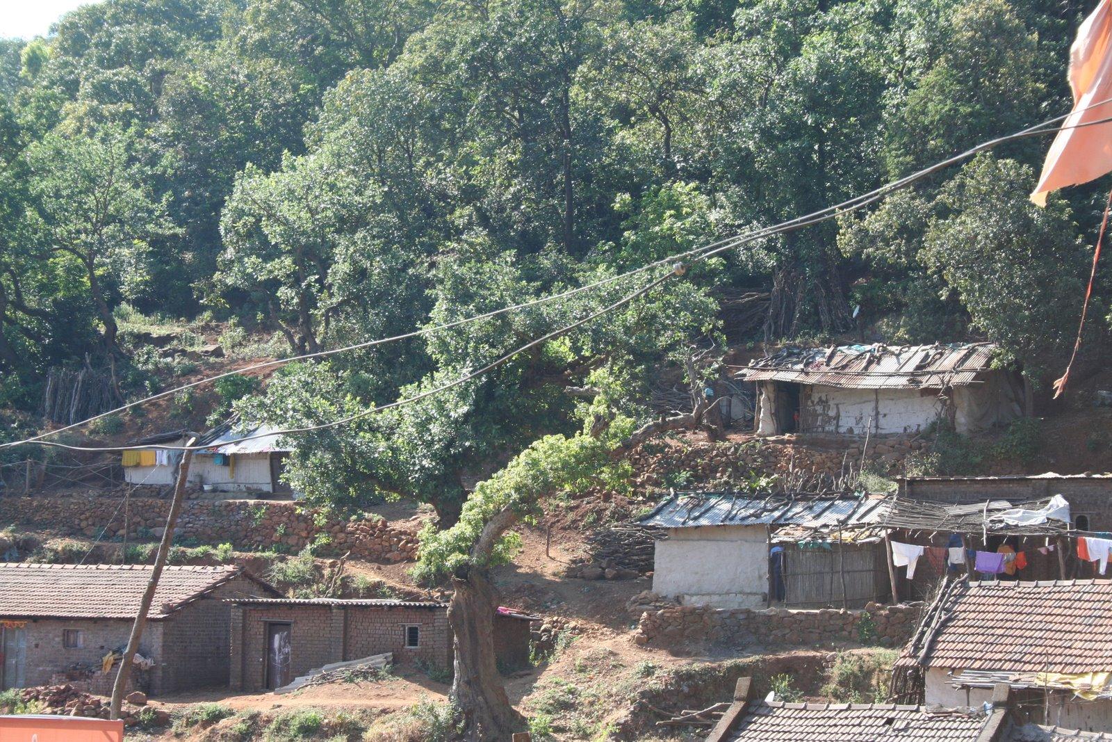http://3.bp.blogspot.com/-rDFjknsWsFI/TbGiqG-fKfI/AAAAAAAAAb0/77fTY8MwplA/s1600/the%2Bfamous%2Bbhimashankar%2B%2Bjyotirling%2Bof%2Bindia%2Bpictures%2Bdownload.jpg