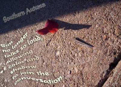 Southern Autumn Poem & Photo © By Joanna Ballard. All rights reserved. No reproduction of this material, in any form or medium, is permitted without express permission of the author.