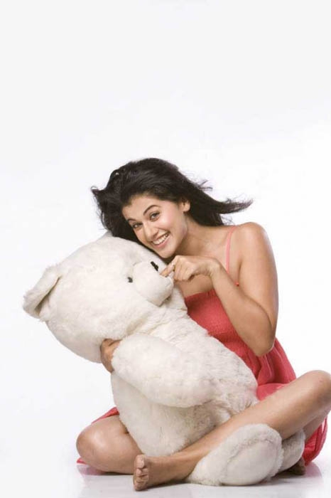 Tapsee with teddy bear - TAPSEE IN VARIOUS HOT PICS