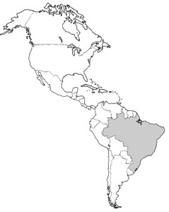 Juntos  Misturados Continente Americano