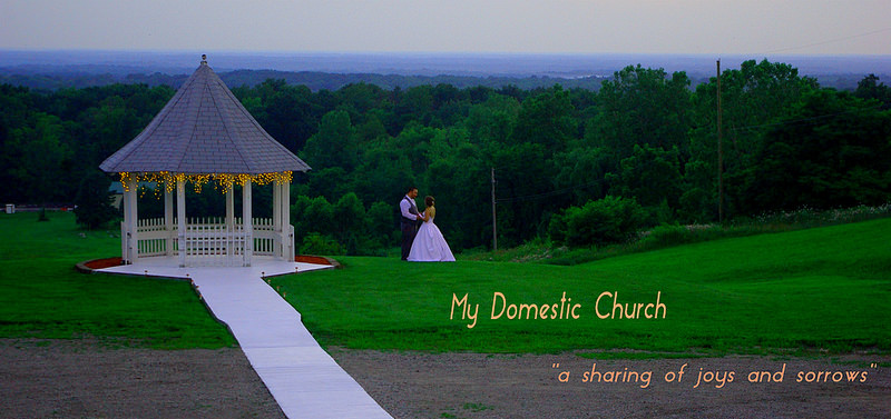 My Domestic Church