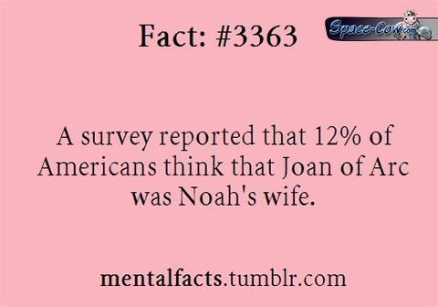 funny Noah wife picture