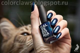 Calzedonia Blu Bolla