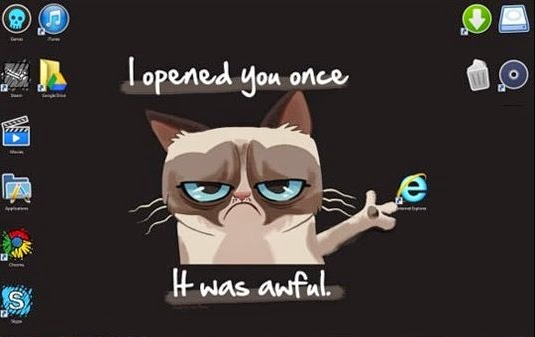 grumpy cat internet explorer