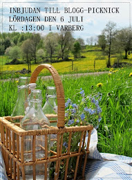Blogg-Picknick