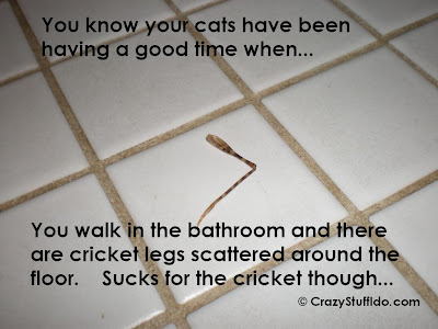 You walk in the bathroom and there are cricket legs scattered around the floor. Sucks for the cricket though...