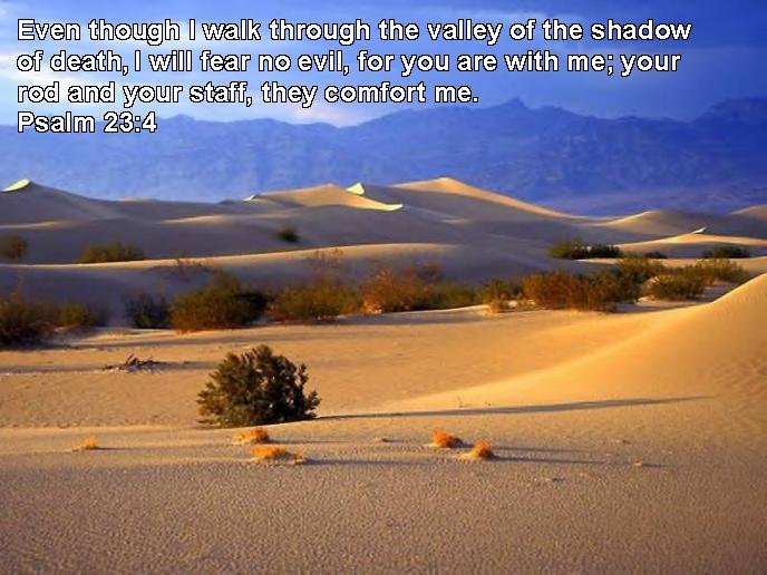 jesus quotes on peace. Bible Quotes | Psalm 23:4