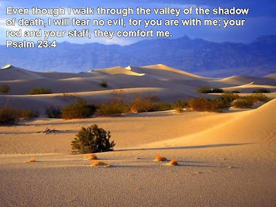 Psalm 23 4 Bible Quote