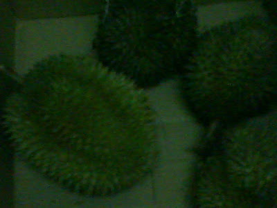 Sedapnya Duriannn ....