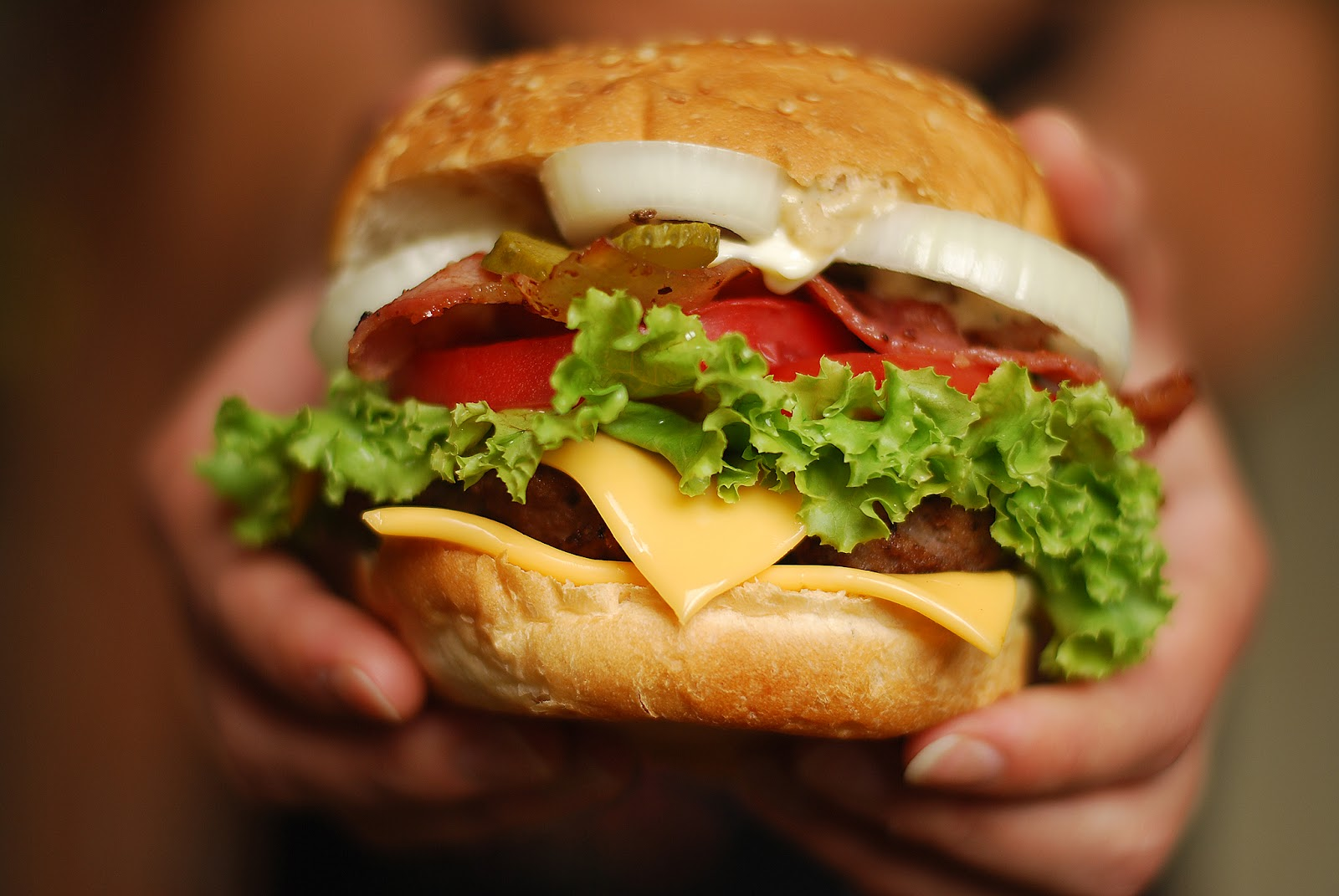 shvedskaya-tolerantnost--burgery-besplatno