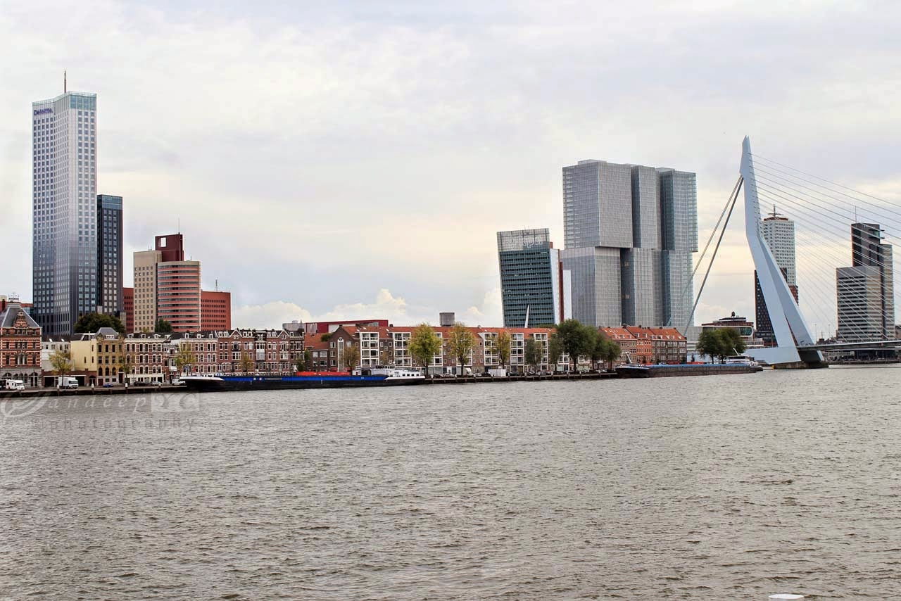 panoramic view of the skyscrapers of Kop Van Zuid