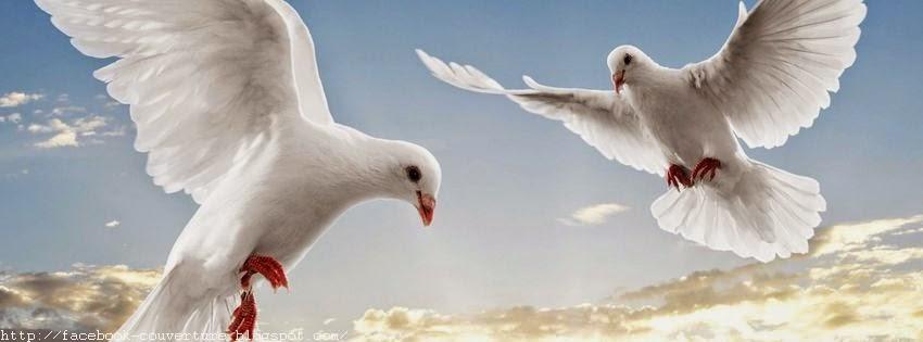 Couverture facebook les colombes