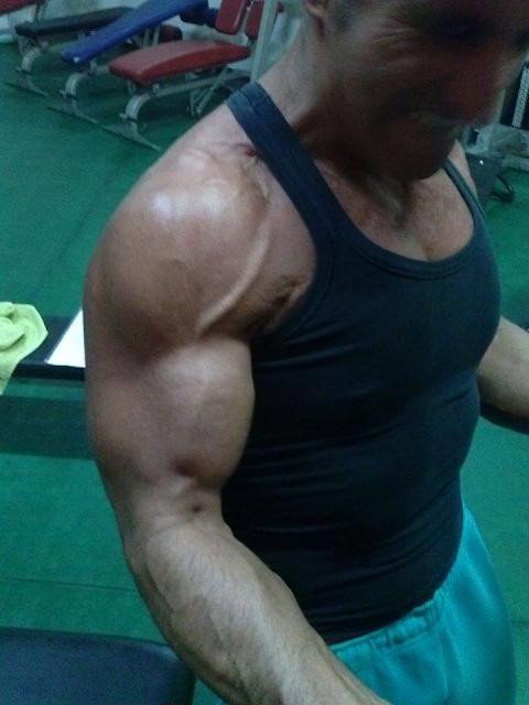 Modifiche indotte dall'allenamento ad alta intensitá - Articolo di Alfredo Petrosino per MosseBuzz