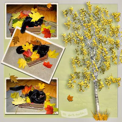 kot i liście