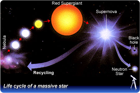 Red giant  Wikipedia